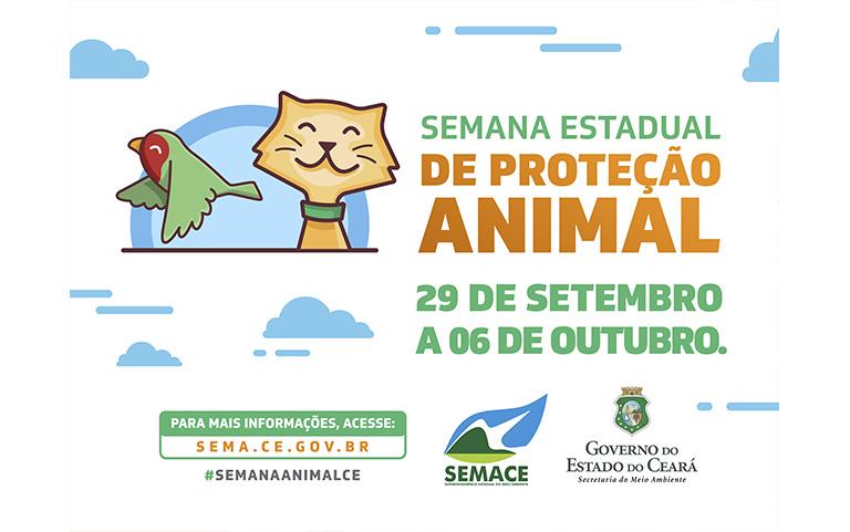 Seminário debaterá Proteção Animal na Assembleia Legislativa