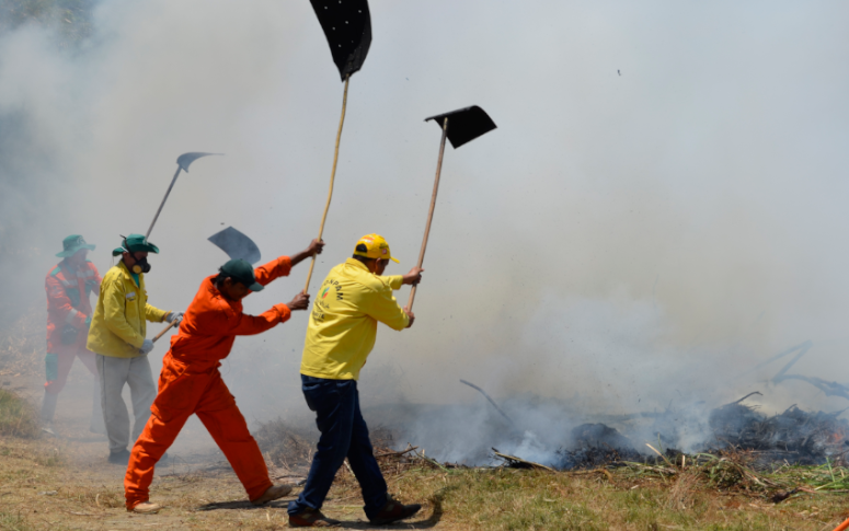 Governo decreta emergência ambiental para combater incêndios até janeiro de 2021
