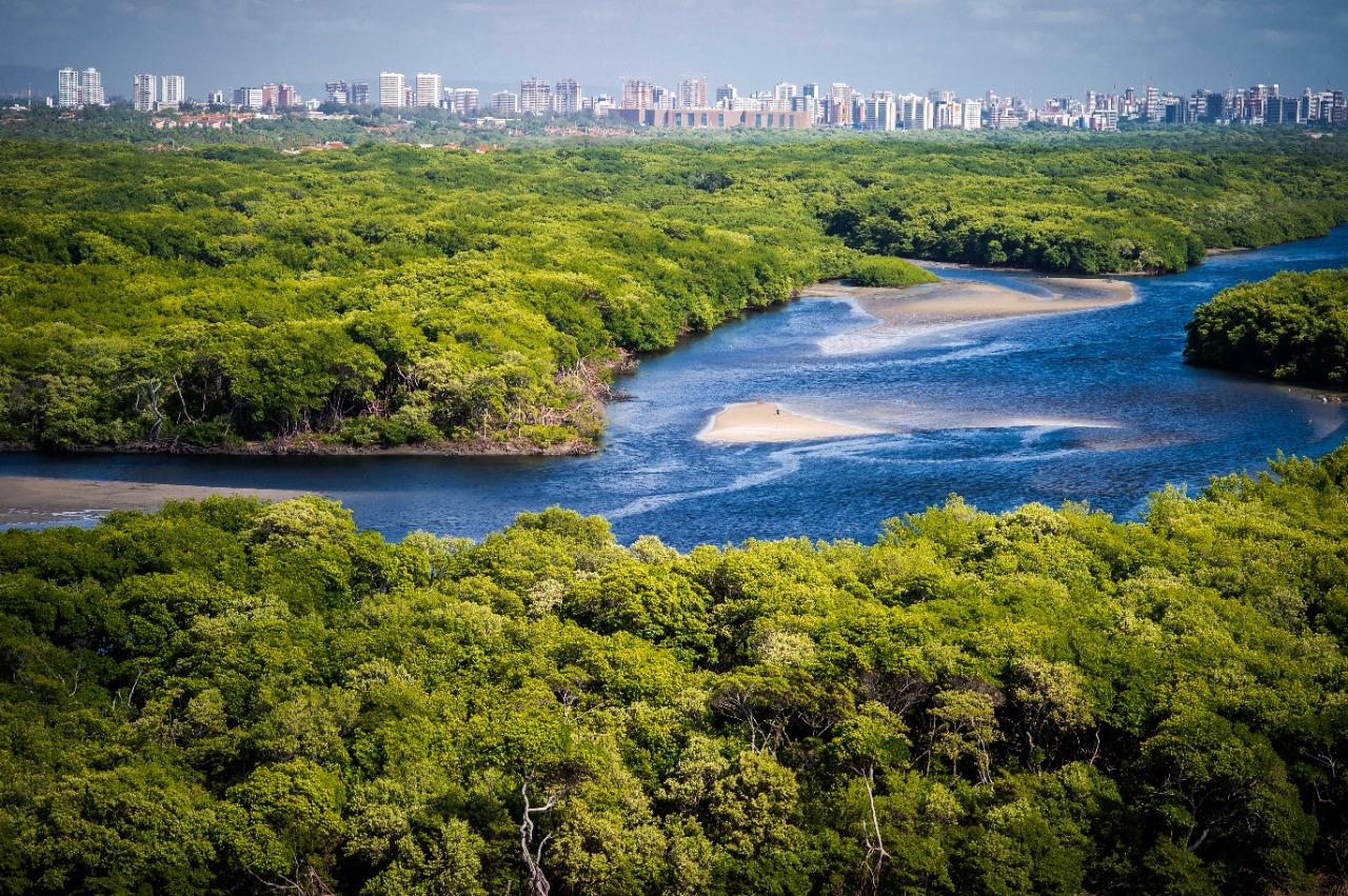 SEMA promove vasta programação no Junho Ambiental