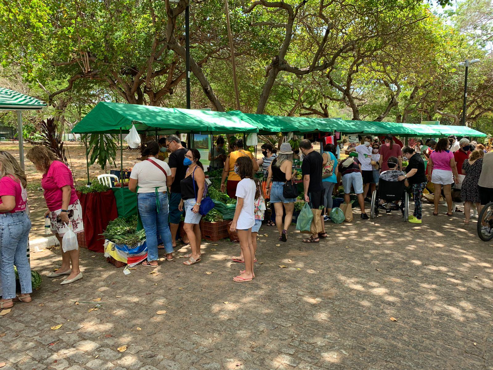 Sábado (30), na área Adahil Barreto do Cocó, tem mais uma edição da Feira Agroecológica